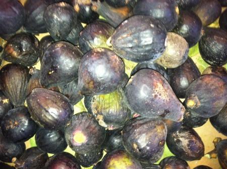 Sassanid Figs